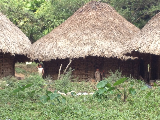 Huts of the Kogis