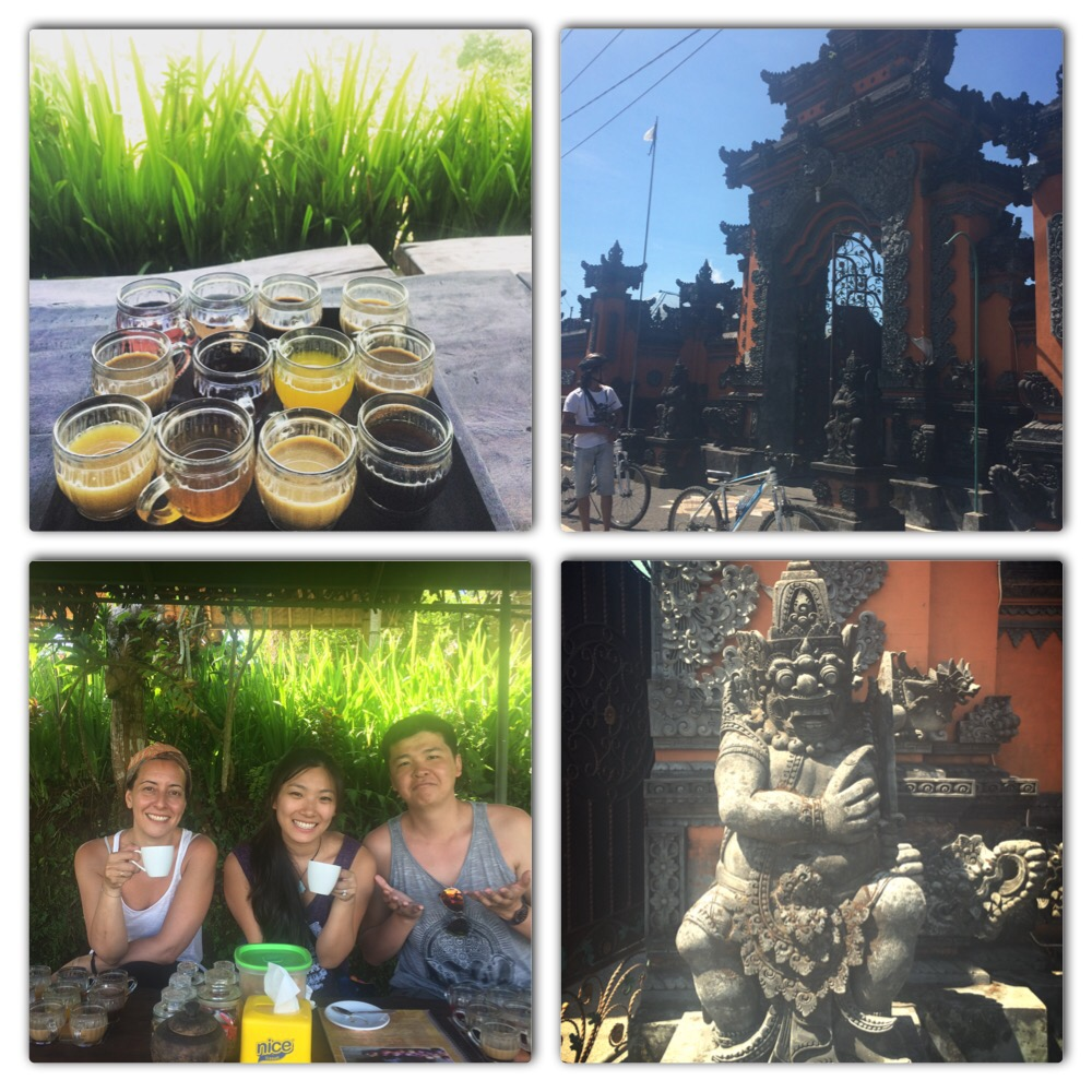 Luwak coffee tasting and typical temples/statues we saw along the way during the 8 hour bike tour
