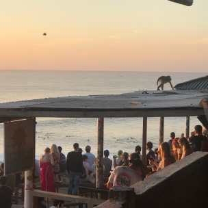 Everyday a crowd gathers to watch the surfers during sunset