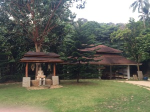 Vipassana Retreat. I must have walked thousands of steps around this statue while practicing walking meditation day and night!