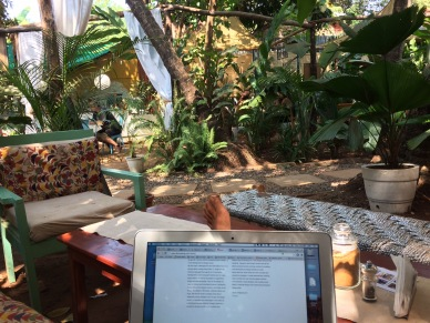 My office aka Garden of Eden!