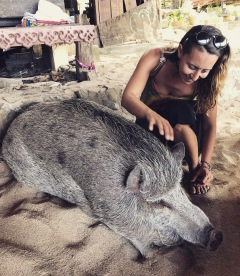 The cutest pet pig at Coral Bay Beach :)