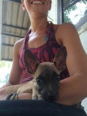A rewarding day at PACS animal shelter