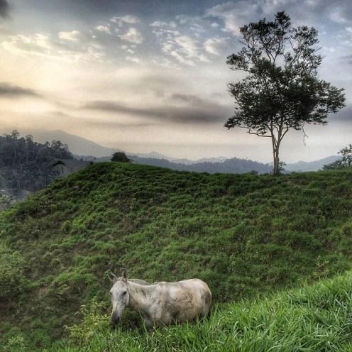 Beautiful landscape we saw everyday (Photo credit uncorneredmarket.com)