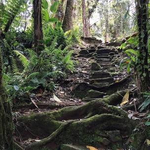 Steps to Lost City (Photo credit uncorneredmarket.com)