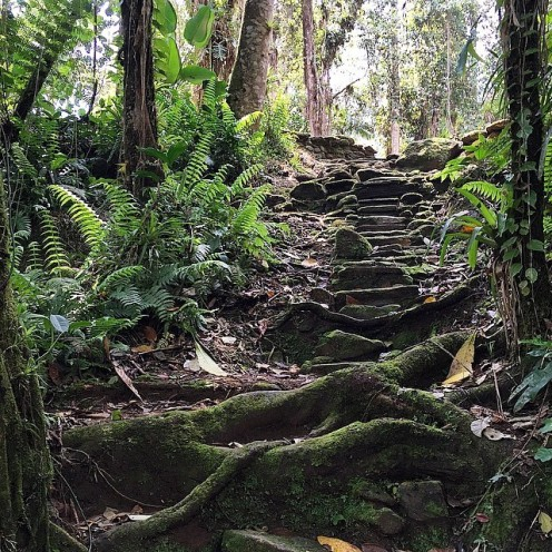 Steps to Lost City (Photo credit uncorneredmarket.com)