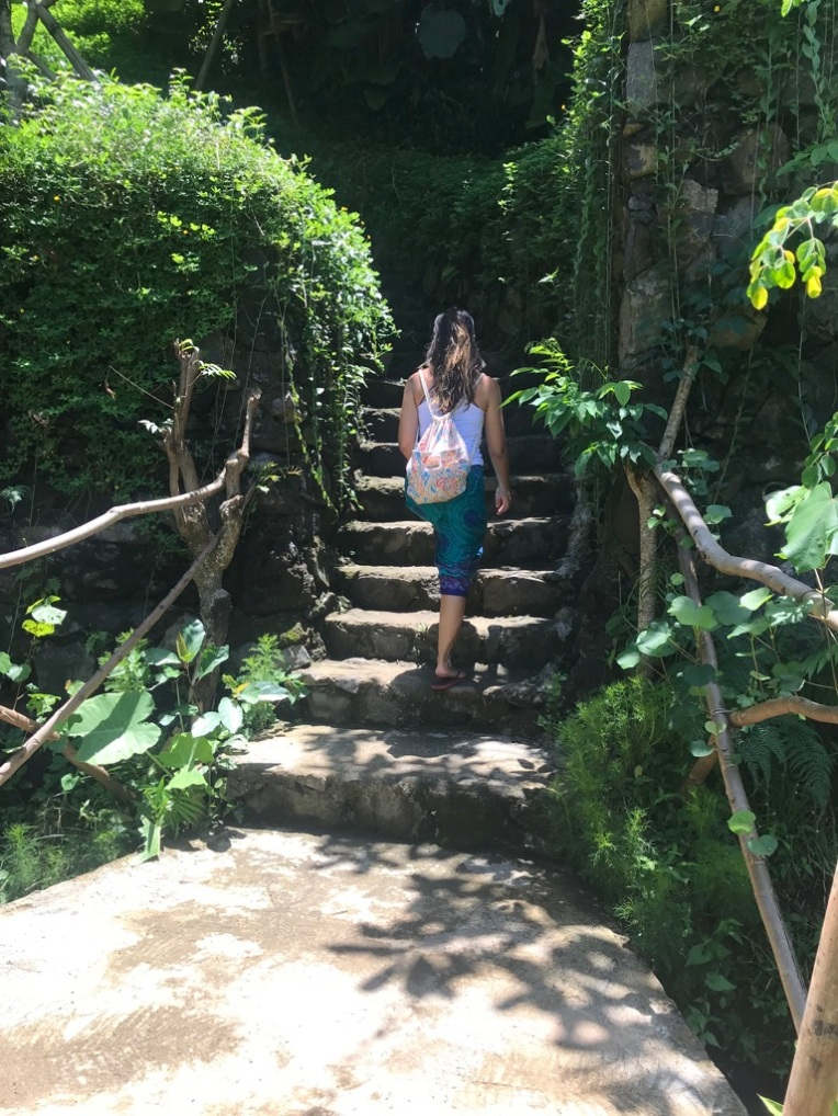 Day trek in Ubud